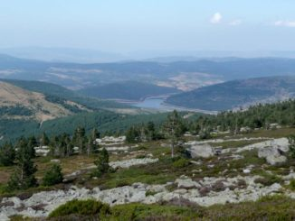 Parque Natural Sierr de Cebollera