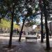 El Ayuntamiento de Logroño pretende crear nuevos paseos peatonales y ampliar el arbolado en la ciudad